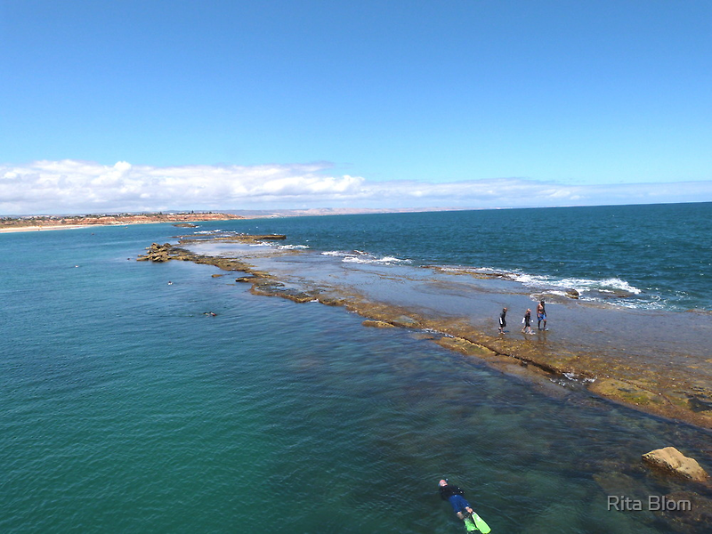 Port Noarlunga Reef from the Jetty. South Coast, South Australia. by Rita Blom