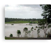 Flooded Plains Canvas Print