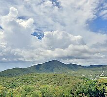 Cooktown  by Peter Doré