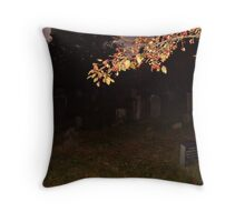 Branch In The Sunset Glow, Sleepy Hollow Throw Pillow