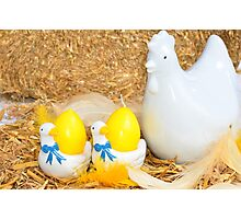 Easter chicken and egg decoration Photographic Print