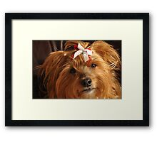 Thinking of her true love...Food!♥ Framed Print