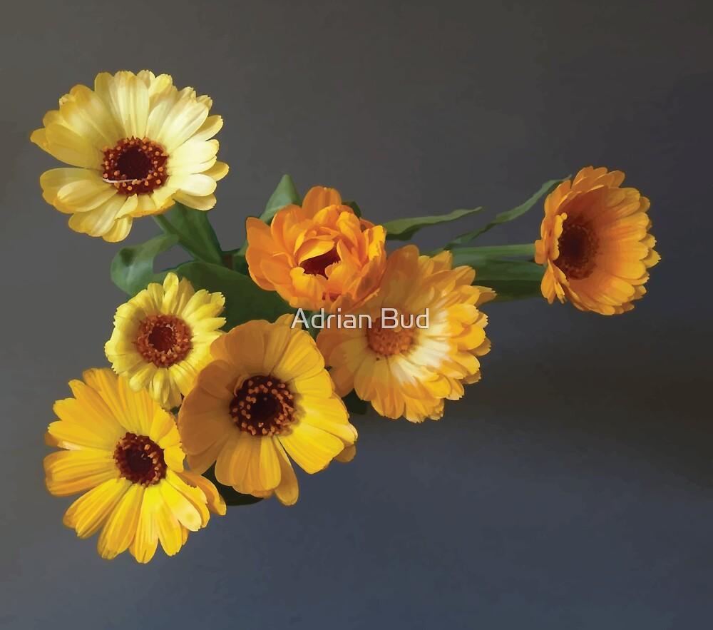 Gerbera bouquet by Adrian Bud