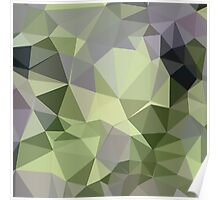 Asparagus Green Abstract Low Polygon Background Poster