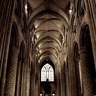 Durham Cathedral Pillars by BethanApple
