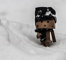 Little D braves the cold and takes a stroll by fotozo