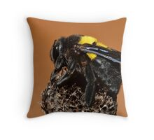 Bumble Bee.......... Throw Pillow