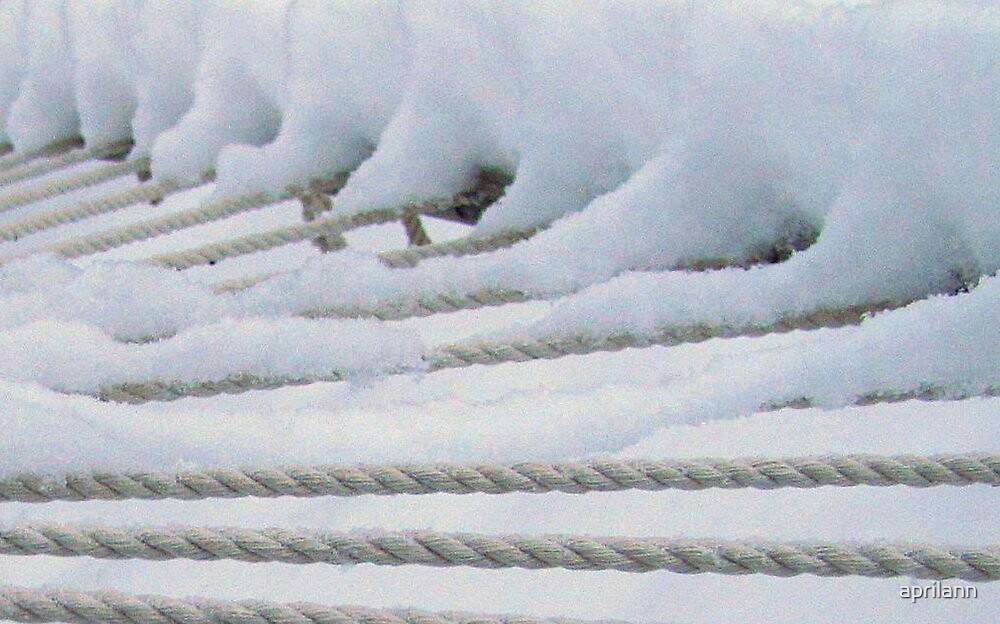 Snow on the Hammock by aprilann