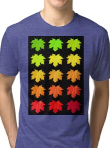 AUTUMN FALLS Tri-blend T-Shirt