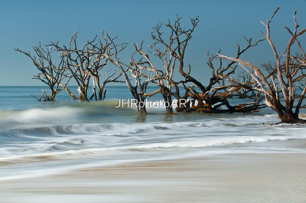 Botany Bay -  Edisto Island  by JHRphotoART