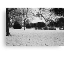 Snowey Landsacpe Canvas Print