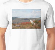 dead tree & paintbrush wildflowers on Johnston's Ridge Unisex T-Shirt