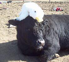Easter Bonnet? by JobieMom