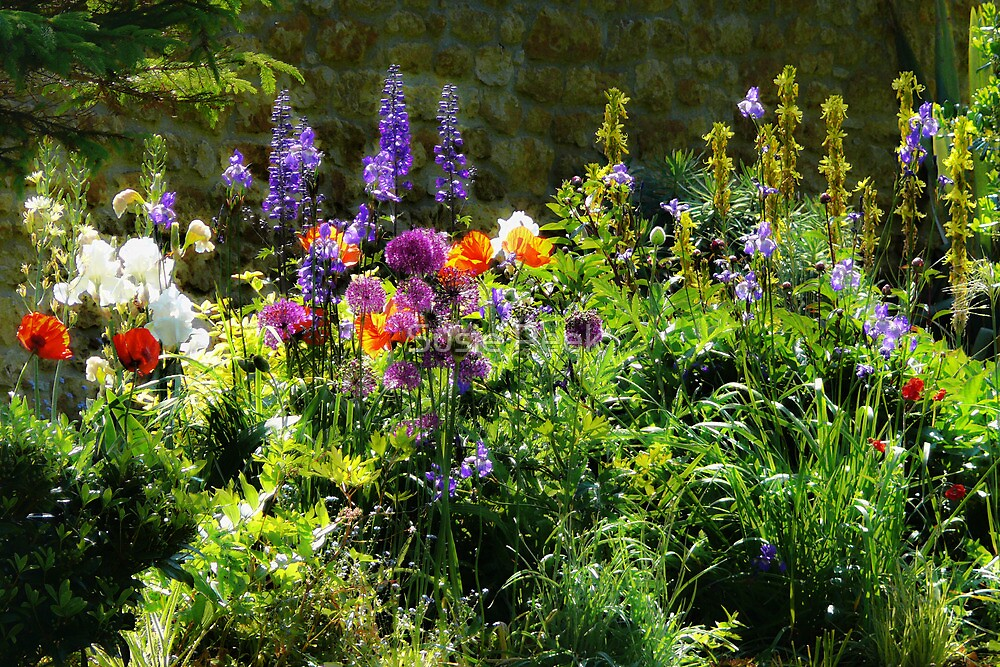 In An English Country Garden by Susie Peek