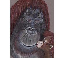 Orangutangoed! Photographic Print