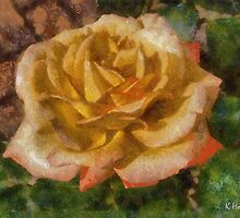Peach Rose by Kenneth Hoffman