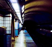 Train Tracks by kalikristine