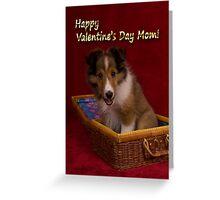 Valentine's Day Sheltie Puppy Greeting Card