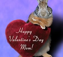 Valentine's Day Bunny Rabbit by jkartlife