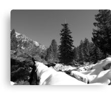 Mountain-Crisp and Cool Canvas Print