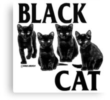 black cat flag Canvas Print