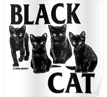black cat flag Poster