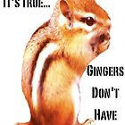 It's True...Gingers Don't Have Souls! by TMHProductions
