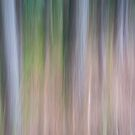 Forest Blur by MartinWilliams