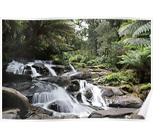 Tripplet Falls Great Otway National Park Poster