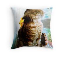 Soft Cat & Madonna Throw Pillow