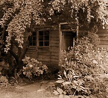 Brickenden - at the rear of the Archer cottage  by gaylene