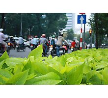 Leaves & Bikes Photographic Print