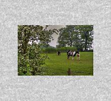 Romany Horses Unisex T-Shirt