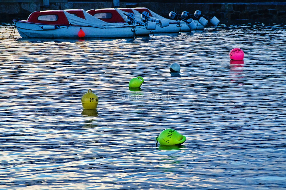 The Buoys They Left Behind by Susie Peek
