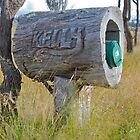 Carved Mailbox by Penny Smith