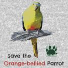 Orange-bellied Parrot t-shirt (light) by OBparrot
