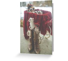 Bunch of Kittens Greeting Card
