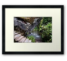 The Wishing Steps Framed Print