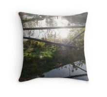 Sunlight on water - reflections Throw Pillow