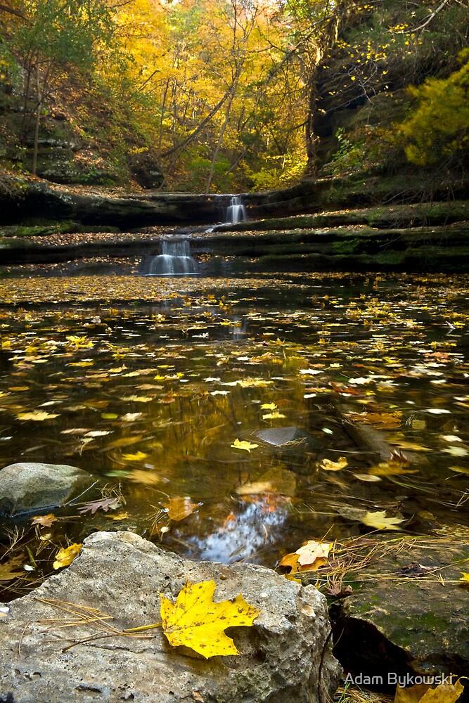 Autumn at Giant's Bathtub by Adam Bykowski