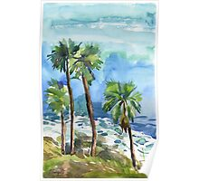Coconut palms on the cliff Poster