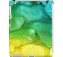 Caribbean Beach iPad Case/Skin