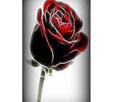 Ƹ̴Ӂ̴Ʒ FRACTALIUS ROSE EFFECT IPHONE CASE Ƹ̴Ӂ̴Ʒ by ✿✿ Bonita ✿✿ ђєℓℓσ