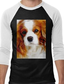 Cavalier King Charles Spaniel  Men's Baseball ¾ T-Shirt