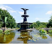 Bethesda Fountain in Central Park Summer 2015 Photographic Print
