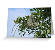 Strange Product of Tree Greeting Card