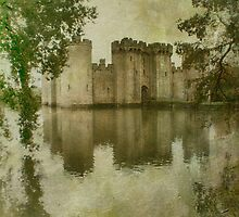 Bodiam Castle by Citizen