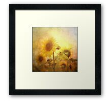 Holding on to the sun Framed Print
