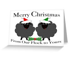 Merry Christmas From our Flock to Yours Greeting Card
