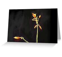 Beautiful Sorrow - A Butterfly Flies Away (no text) Greeting Card